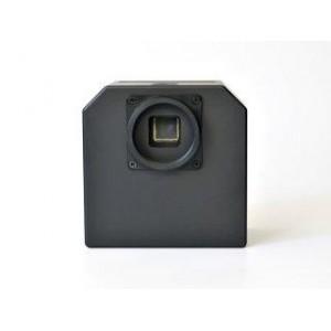 MORAVIAN G2-8300
